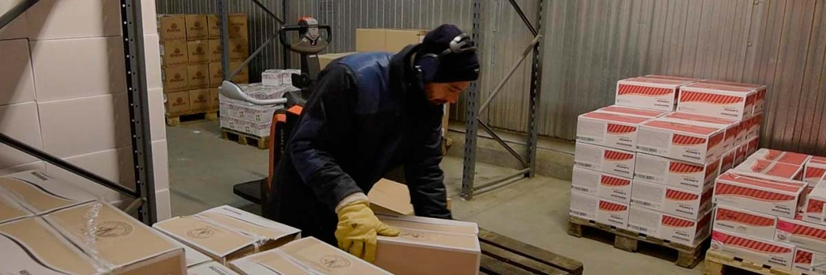 cross docking en froid négatif ou froid positif